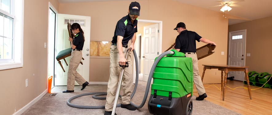 Fleming Island, FL cleaning services
